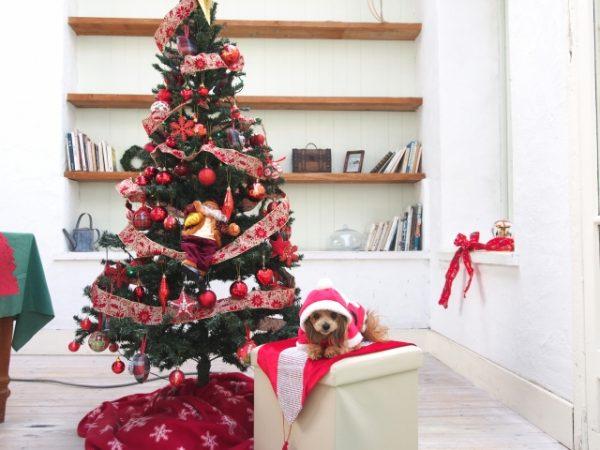 クリスマスツリー人気サイズ120は小さい?150は大きい?どっちがおすすめ?