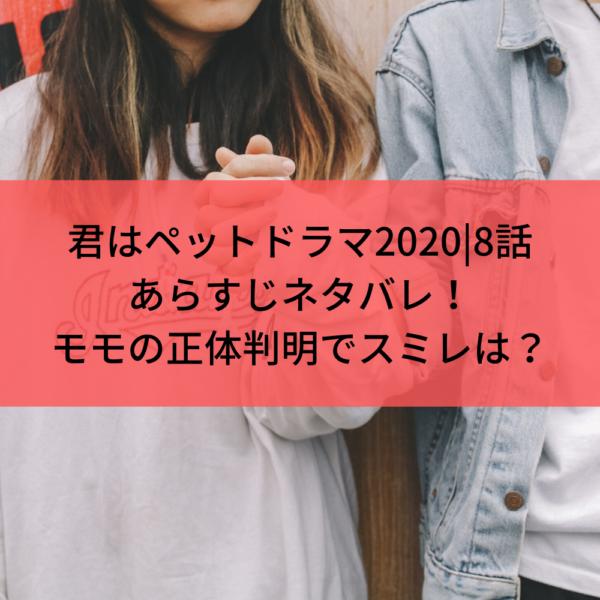 君はペットドラマ2020|8話あらすじネタバレ!伊集院がモモの正体暴露でスミレどうなる?