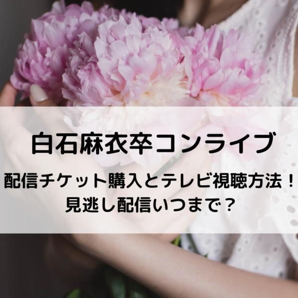 Tv 乃木坂 楽天