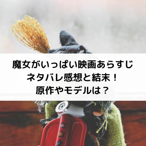 ぼう ろう あらすじ や ネタバレ 2